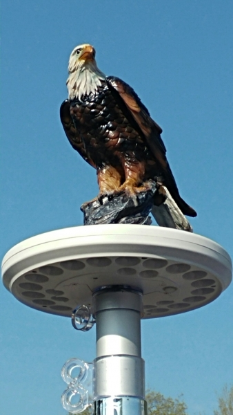 Eagle on Display Flagpole Topper