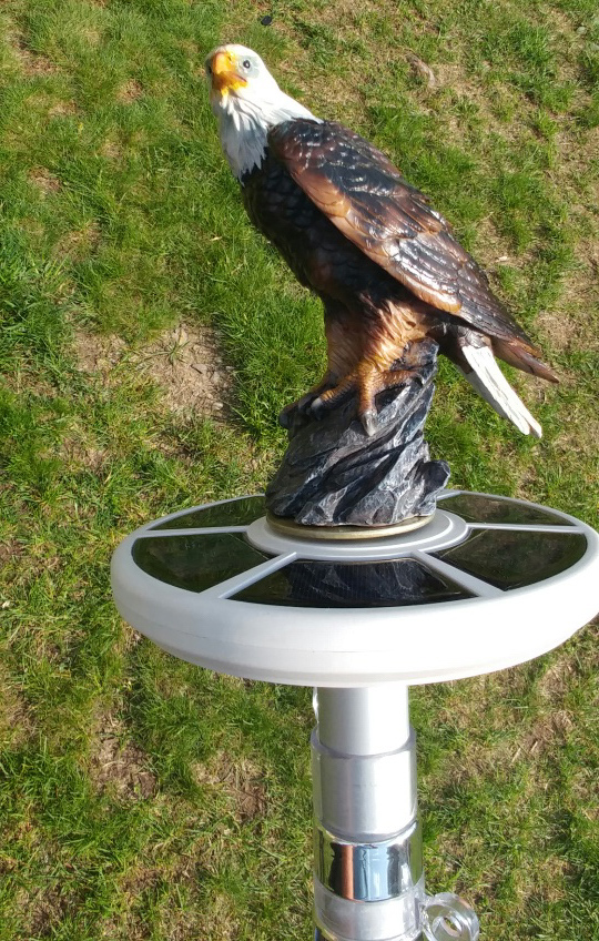Eagle on display flagpole topper.